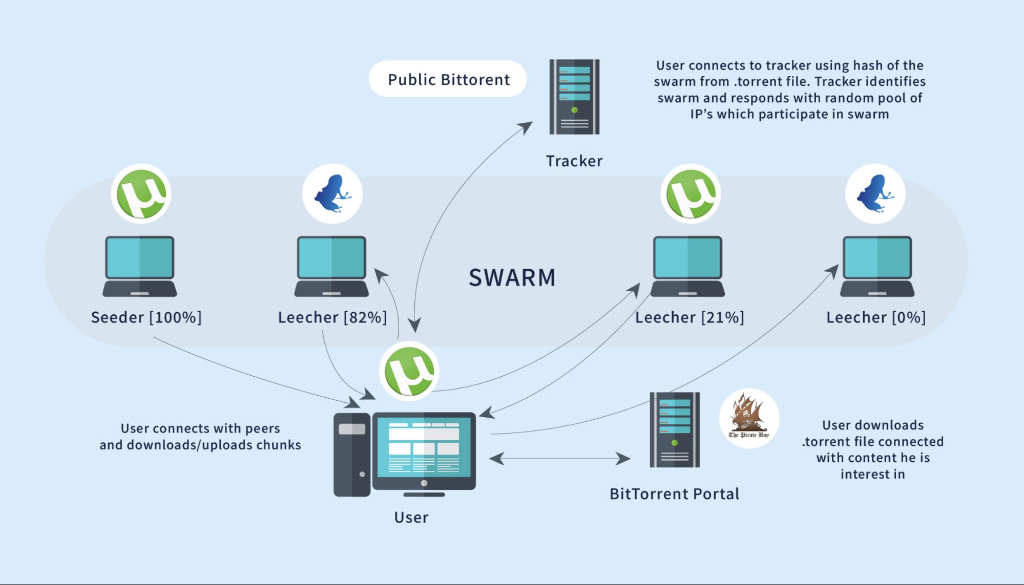IP address in torrent swarm